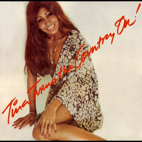 Tina Turner - Tina Turns The Country On