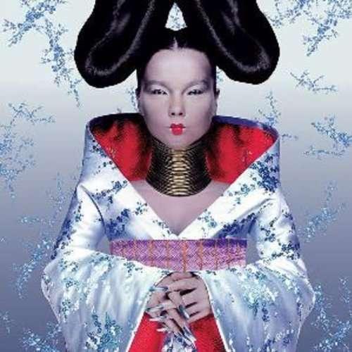 Björk Homogenic Cover