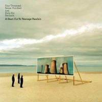 Teenage Fanclub - Four Thousand Seven Hundred And Sixty-Six Seconds - A Short Cut To ...