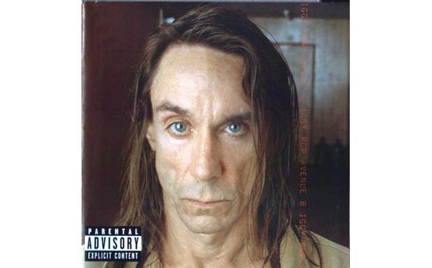 Januar 2000: 'Punk hat fraglos ein musikalisches und soziales Verfallsdatum, und gerade deshalb ist 'Avenue B' ein Meilenstei