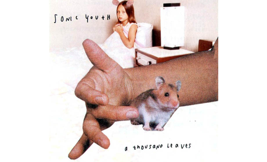 Sonic Youth –A Thousand Leaves