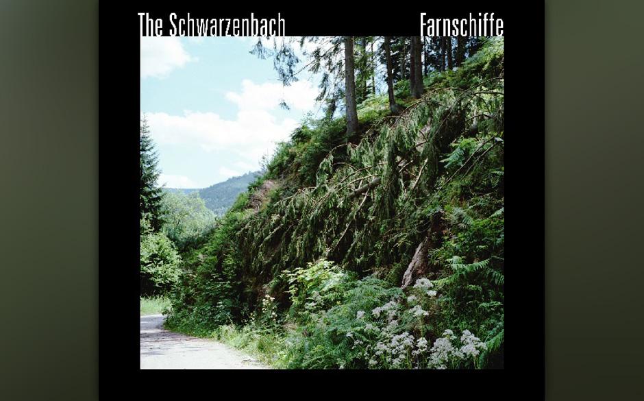 The Schwarzenbach - Farnschiffe
