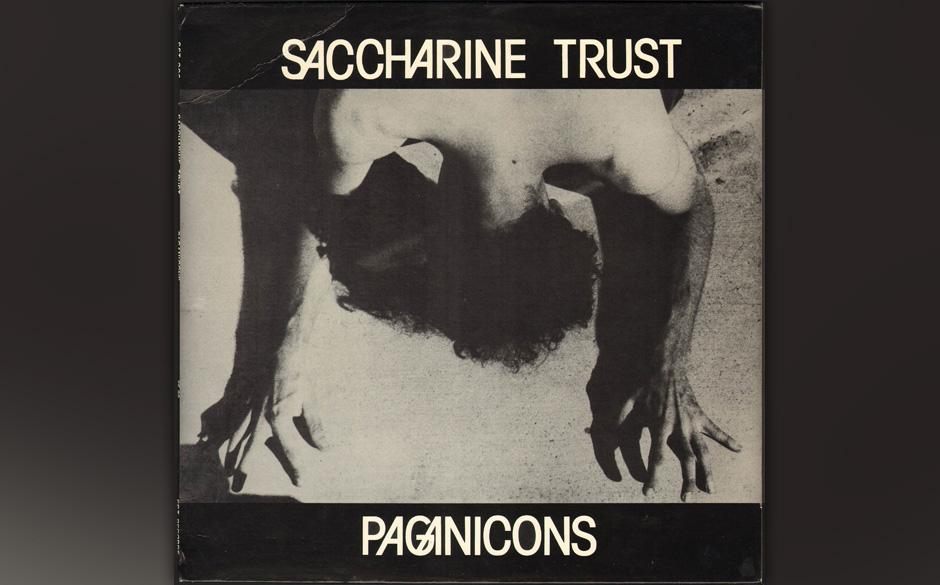 9. Saccharine Trust - Paganicons