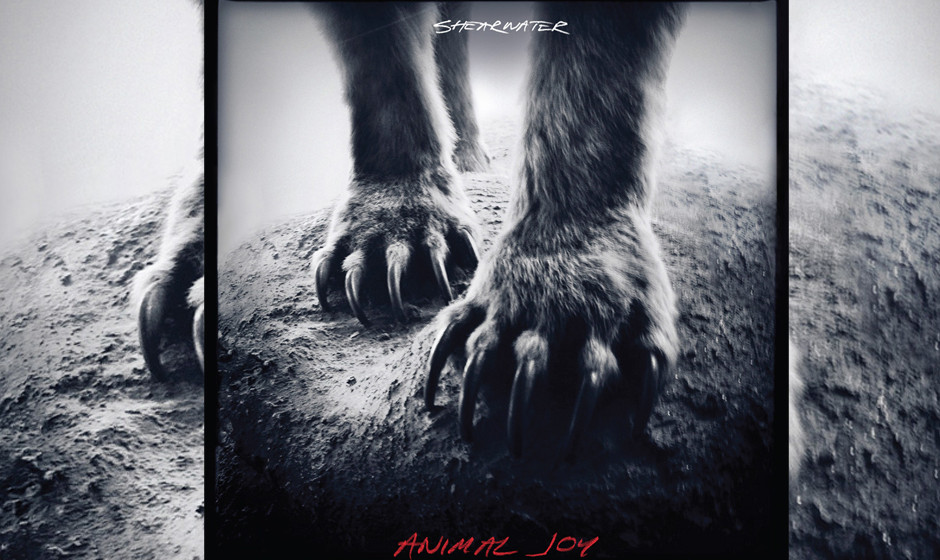 PLatz 92: Shearwater - Animal Kingdom (198 Stimmen)
