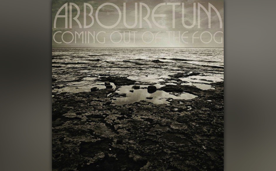 Arbouretum 'Coming Out Of The Fog'