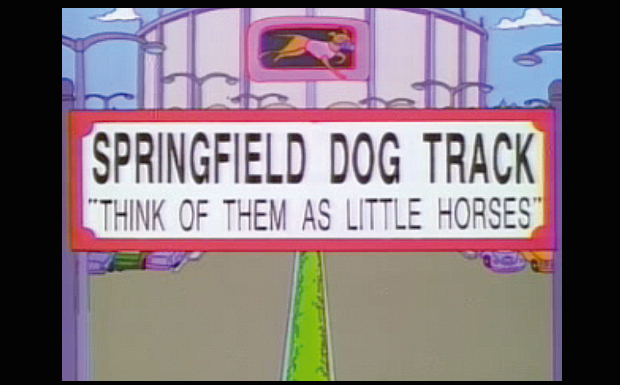 'Springfield Dog Track: 'Think Of Them As Little Horses''