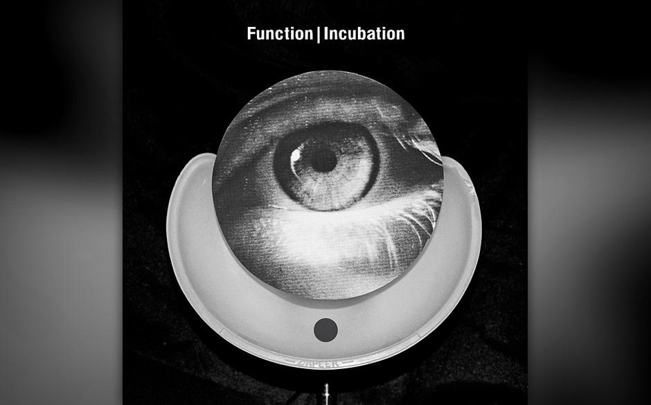 Function – INCUBINATION