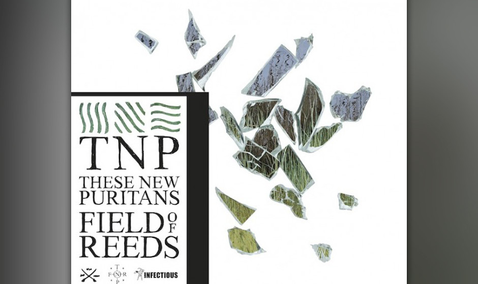 47. These New Puritans - FIELD OF REEDS