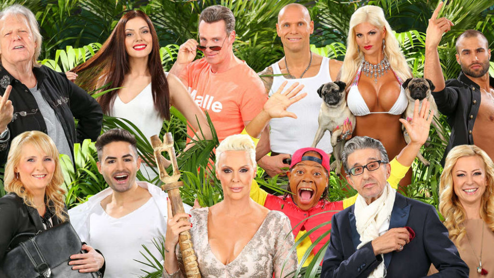 Diese zwölf Kandidaten sind Teil des Dschungelcamp 2016. Folgende 12 Musiker würde Gagautor Micky Beisenherz dort aber auch