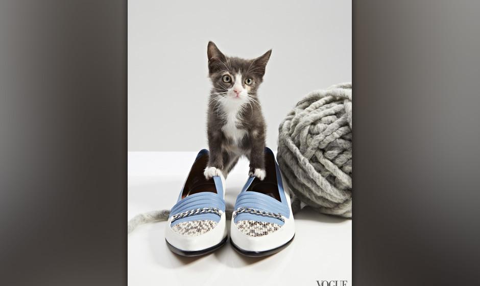 cats and flats vogue zeigt sommerschuhe mit katzen. Black Bedroom Furniture Sets. Home Design Ideas