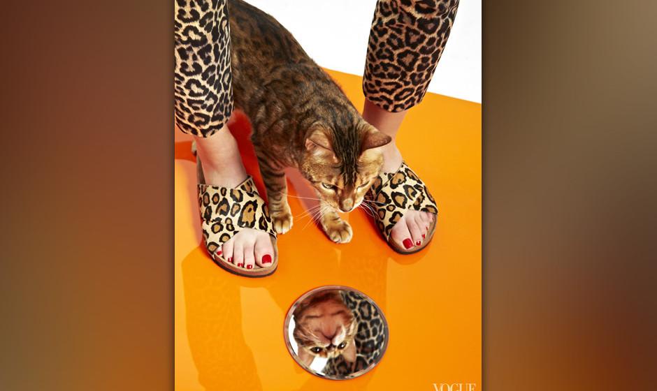 cats and flats vogue zeigt sommerschuhe mit katzen musikexpress. Black Bedroom Furniture Sets. Home Design Ideas