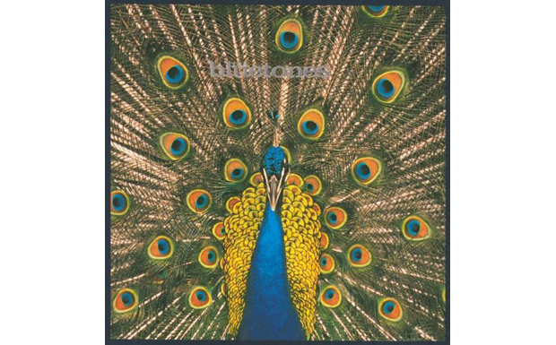 The Bluetones - Expecting To Fly