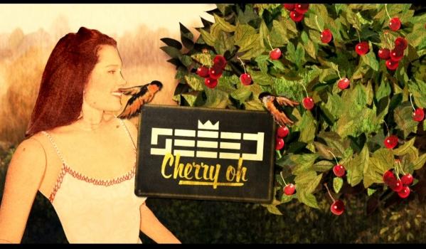 'Cherry Oh 2014' heißt der neue Song von Seeed