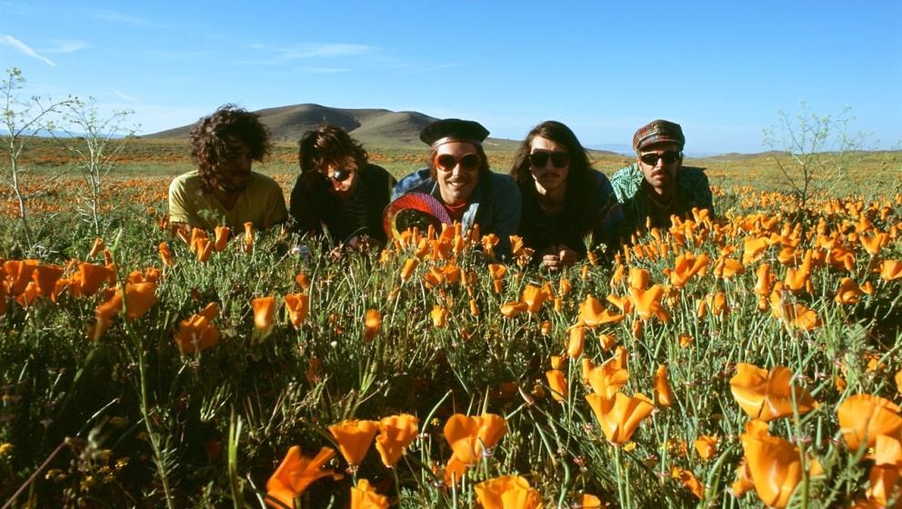 Neues Album und Tournee im August: The Growlers bringen Gute-Laune-Surfsound.