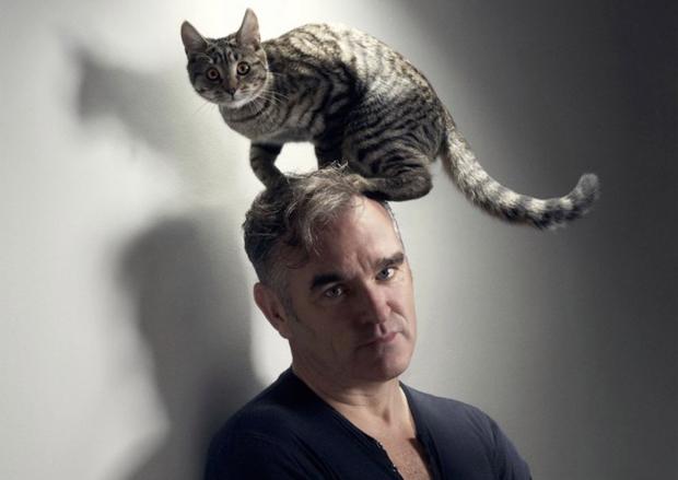 """Warum Morrissey Katzen den meisten Menschen vorzieht? """"Well, I don't have much choice. People don't like me."""""""