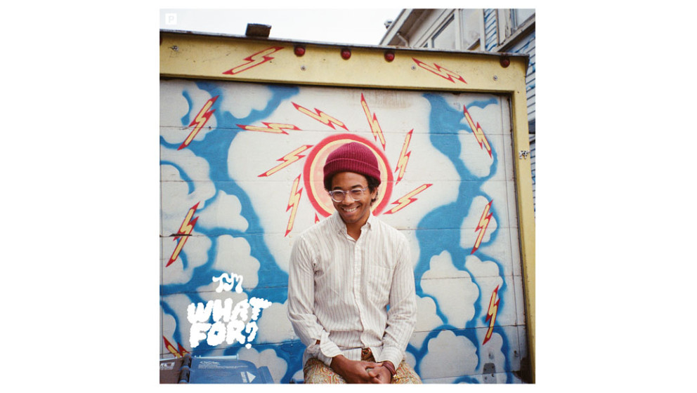 14. Toro Y Moi - WHAT FOR