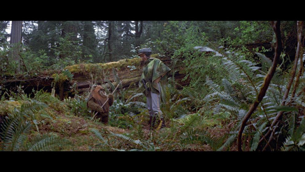 Leia und Luke werden getrennt und Leia trifft auf den Ewok Wicket, der sie ins Dorf der Ewok bringt.