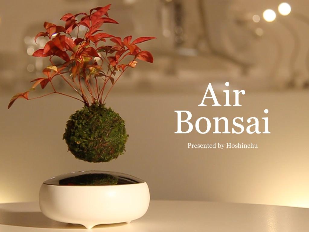 Klein und cool: der Air Bonsai