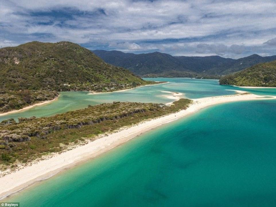 Dieses Stück Strand steht dank der Crowdfunding-Kampagne jetzt unter Naturschutz.