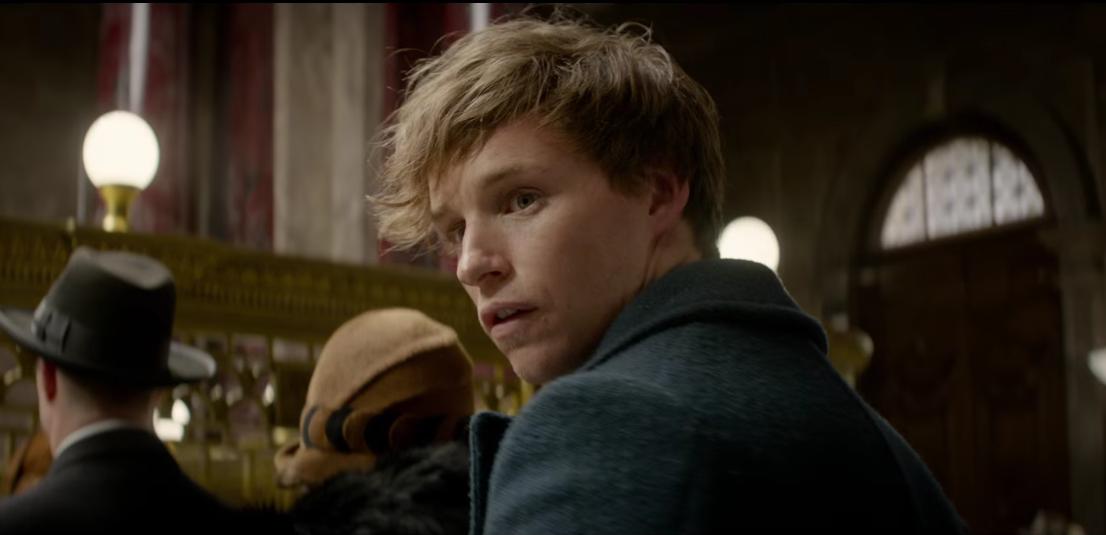"""Eddie Redmayne ist Newt Scamander. Und quasi der neue """"Harry Potter""""."""