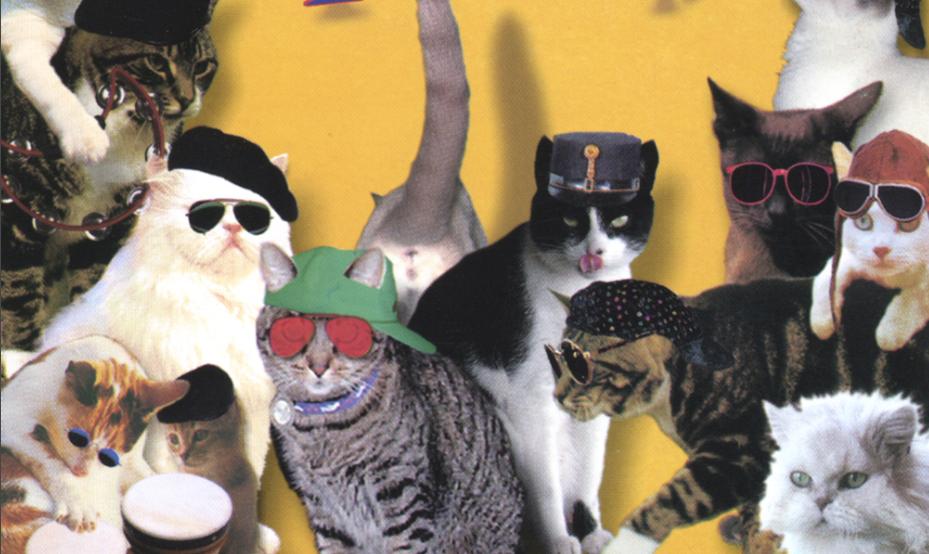 Das Cover der Katzen-Platte CAT-A-TONIC