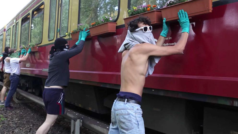 Screenshot aus dem Urban-Gardening-Video