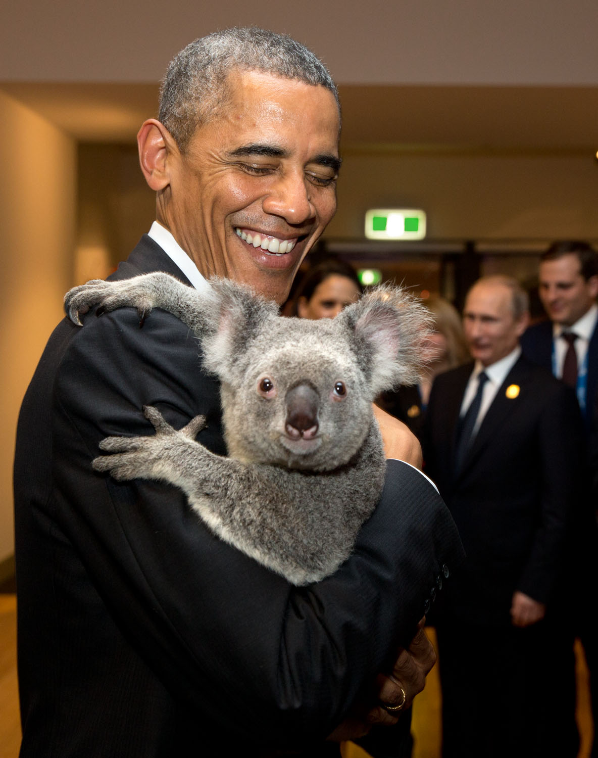 """Nov. 15, 2014 """"The President holds a koala backstage prior to the G20 Welcome to Country Ceremony at the Brisbane Convention and Exhibition Center in Brisbane, Australia."""" (Official White House Photo by Pete Souza) This official White House photograph is being made available only for publication by news organizations and/or for personal use printing by the subject(s) of the photograph. The photograph may not be manipulated in any way and may not be used in commercial or political materials, advertisements, emails, products, promotions that in any way suggests approval or endorsement of the President, the First Family, or the White House."""