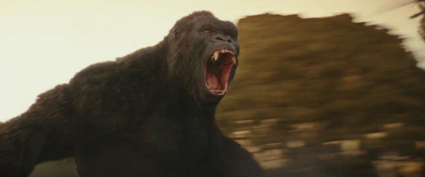Größer als jemals zuvor: Der neue King Kong.