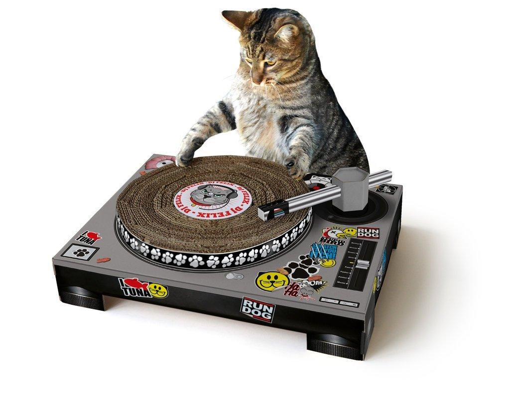 Für Vinyl- und Katzenfreunde: der Katzenplattenspieler