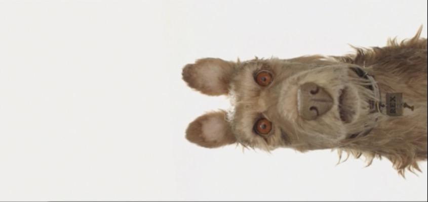 "Erstes Bild aus ""Isle of Dogs""."