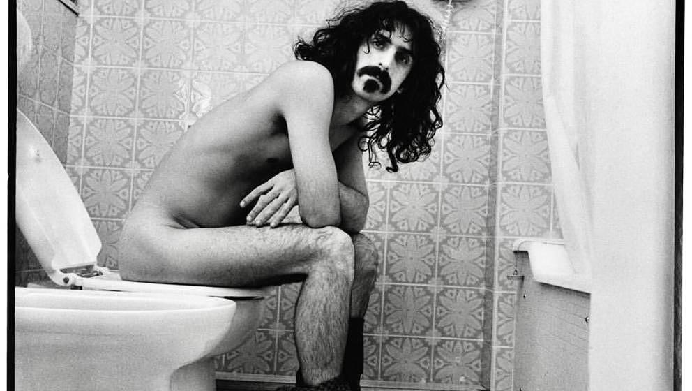 Zappa on toilet