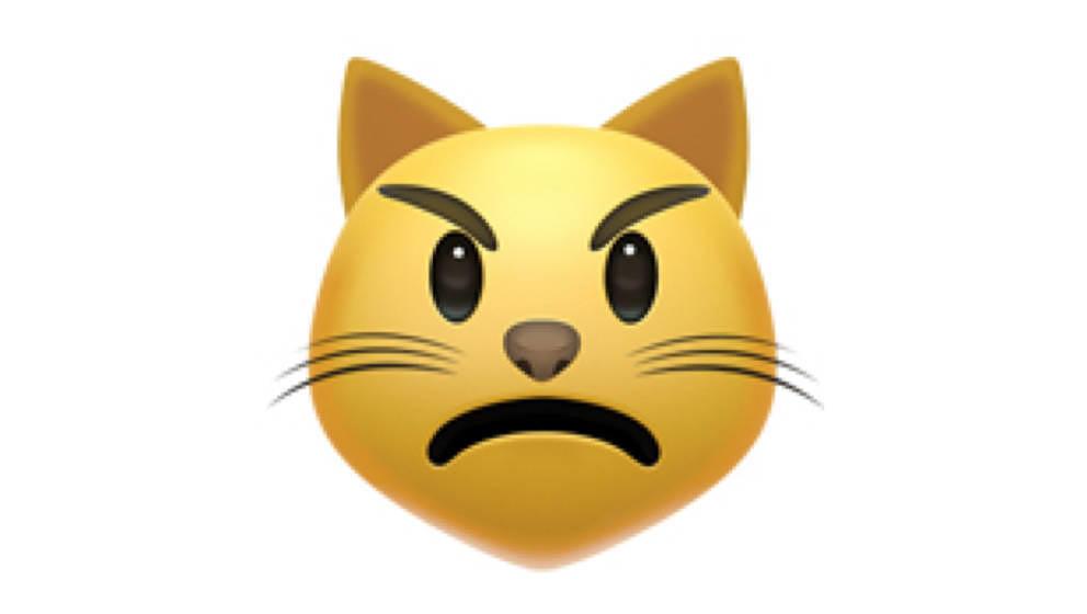 Die wütende Katze darf bleiben, dafür können wir uns getrost von der Seilbahn verabschieden