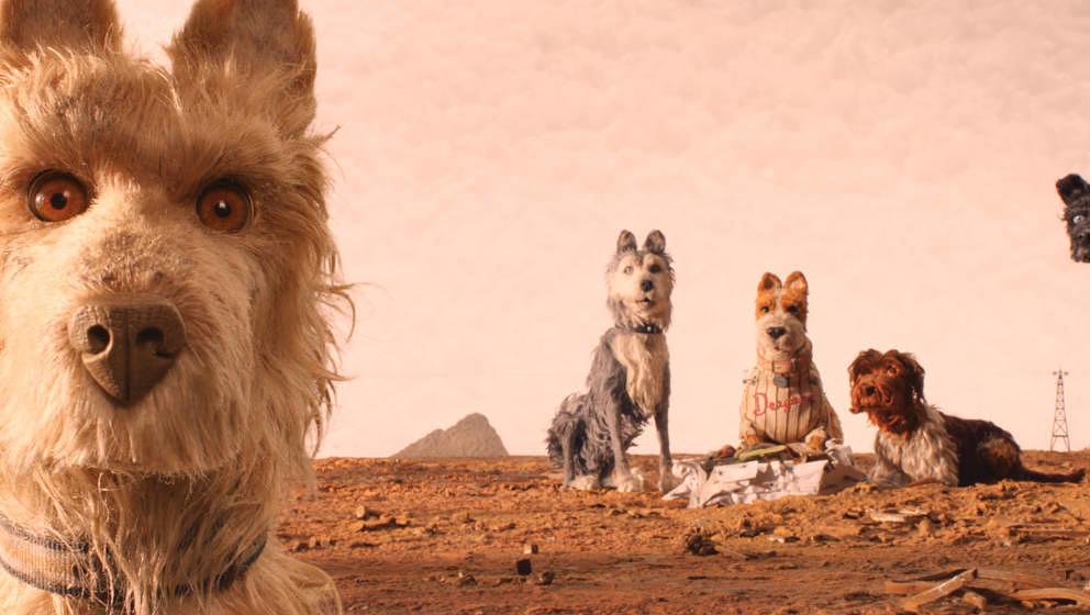 """Szene aus """"Isle of Dogs"""""""
