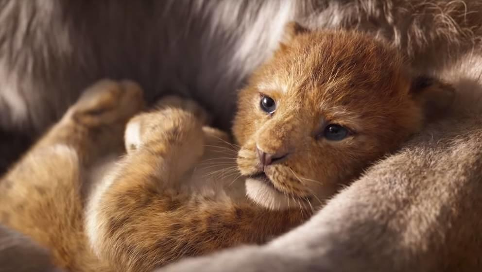 """Szene aus """"Der König der Löwen"""""""