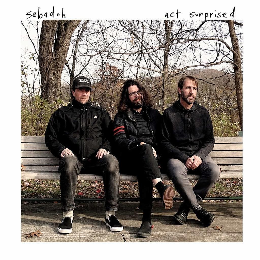 Sebadoh: Act Surprised (Kritik & Stream) - Musikexpress