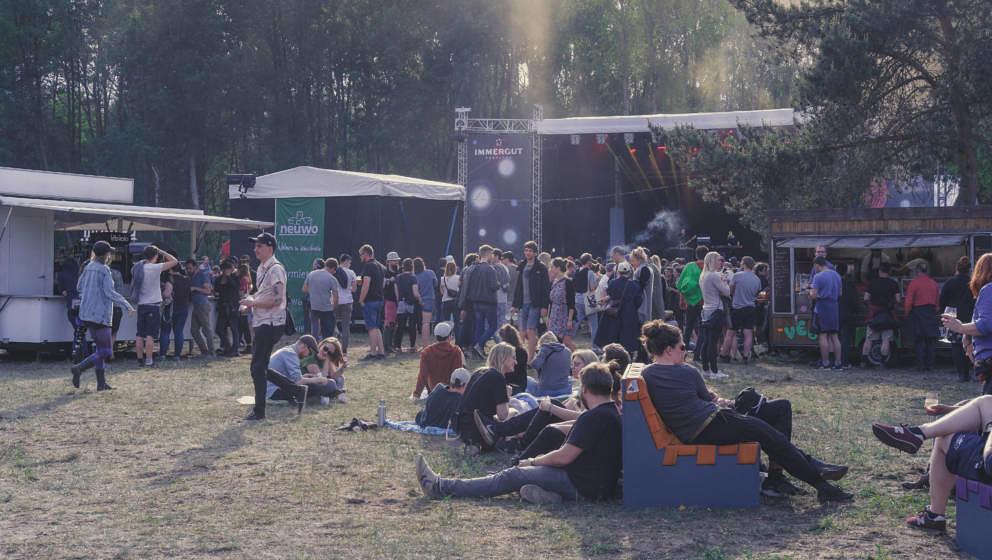 2019 wurde 20 Jahre Immergut Festival gefeiert.