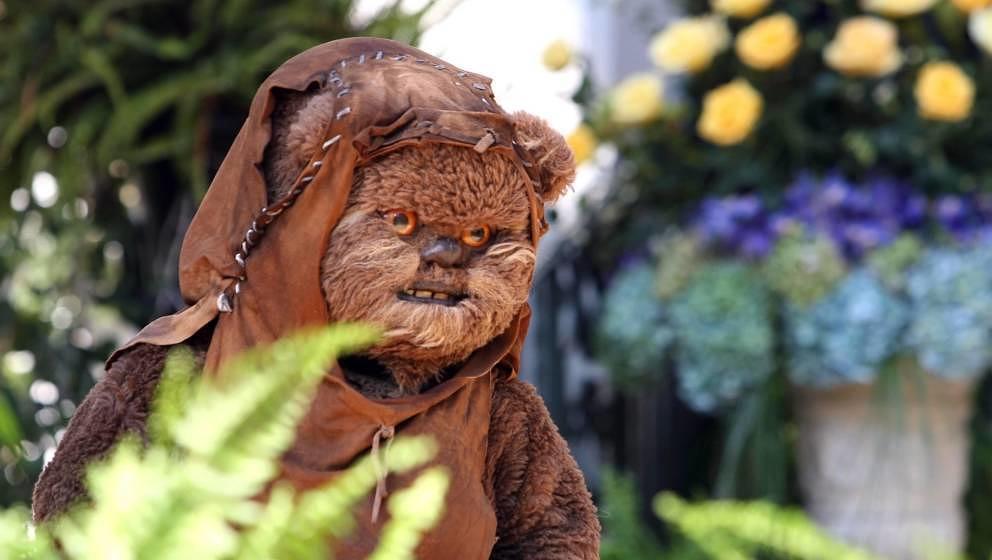 """Neben """"Clone Wars"""" kommen auch zwei """"Ewoks""""-Fernsehfilme aus den 1980er-Jahren zu Disney+."""